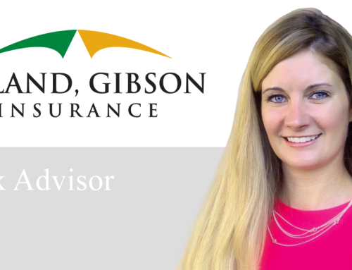 Deland, Gibson Adds Risk Advisor